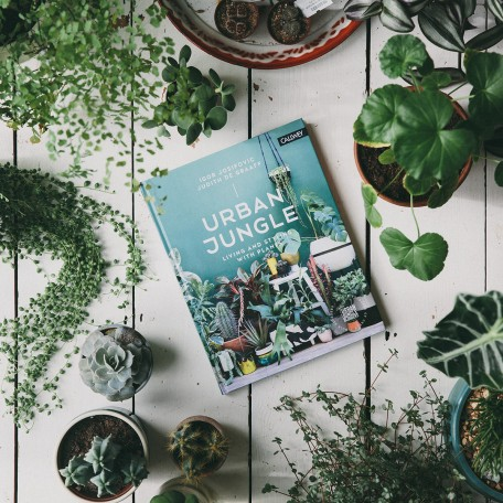 urban-jungle-bloggers-book-living-and-styling-with-plants-the-future-kept-new