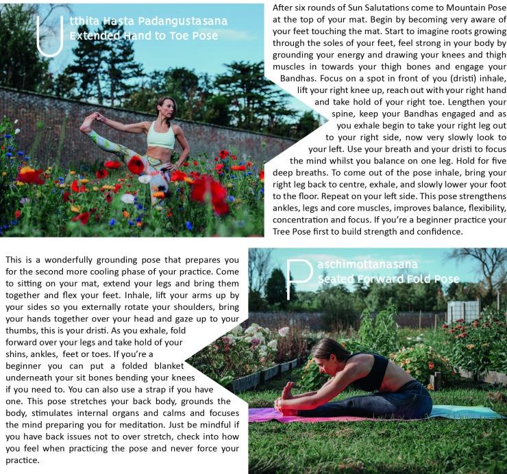 yogaON20_1